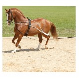 Шлея Пессоа,Horse-Friends арт.RUS52665- WB